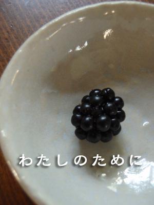 20080810-20080810d.jpg