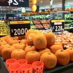 オレンジ色のシーズン到来