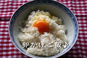 20080514-20080513.jpg