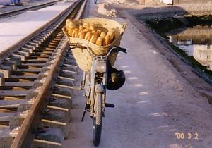 20081016-tunisia25.jpg